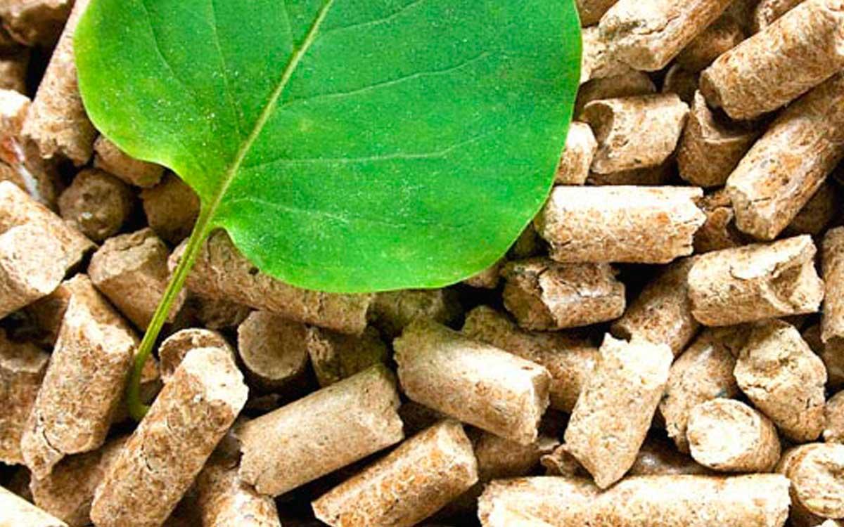 Biomasa blog calderas de gas en tu ciudad for Como funcionan las calderas de gas