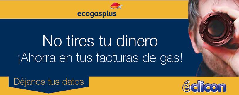ecogasplus
